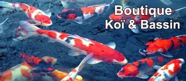 Boutique Koï & Bassin