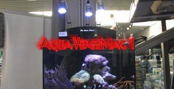 Aquavideomag