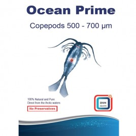 Ocean Prime Codepods 500-700µm