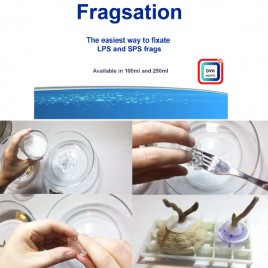 Fragstation 100ml
