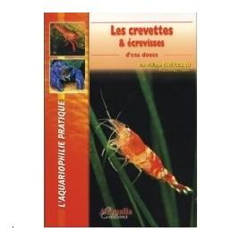 les crevettes & écrevisses d'eau douce
