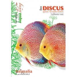Guide Aquamag - Les discus