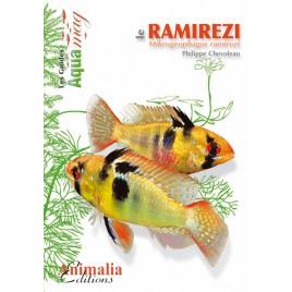 Guide Aquamag - Les ramirezis et l'altispinosus