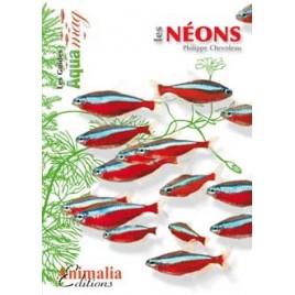 Guide Aquamag - Les néons