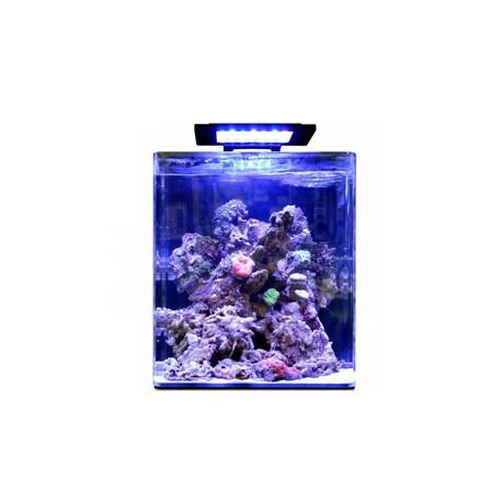 Blue marine reef 60 aquarium