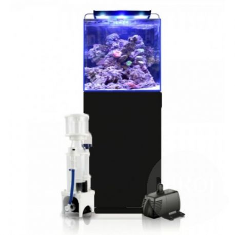 Blue marine reef 125 aquarium noir