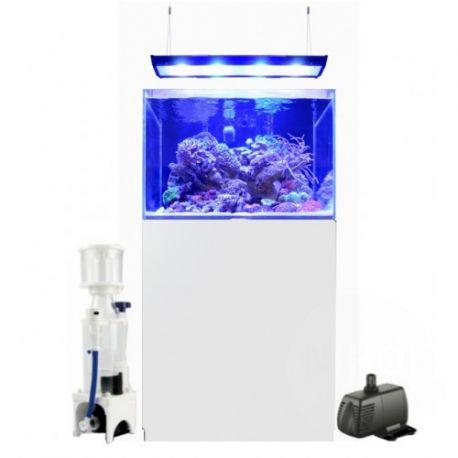 Blue marine reef 200 aquarium blanc