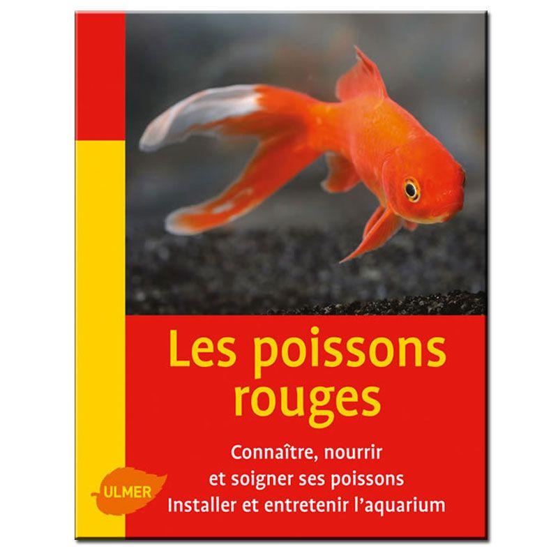 Poissons rouges mini maxi for Nourrir des poissons rouges