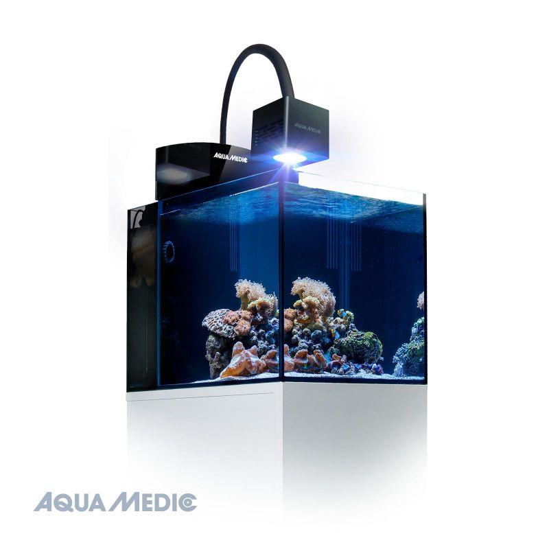 aqua medic aquarium blenny qube avec meuble blanc. Black Bedroom Furniture Sets. Home Design Ideas