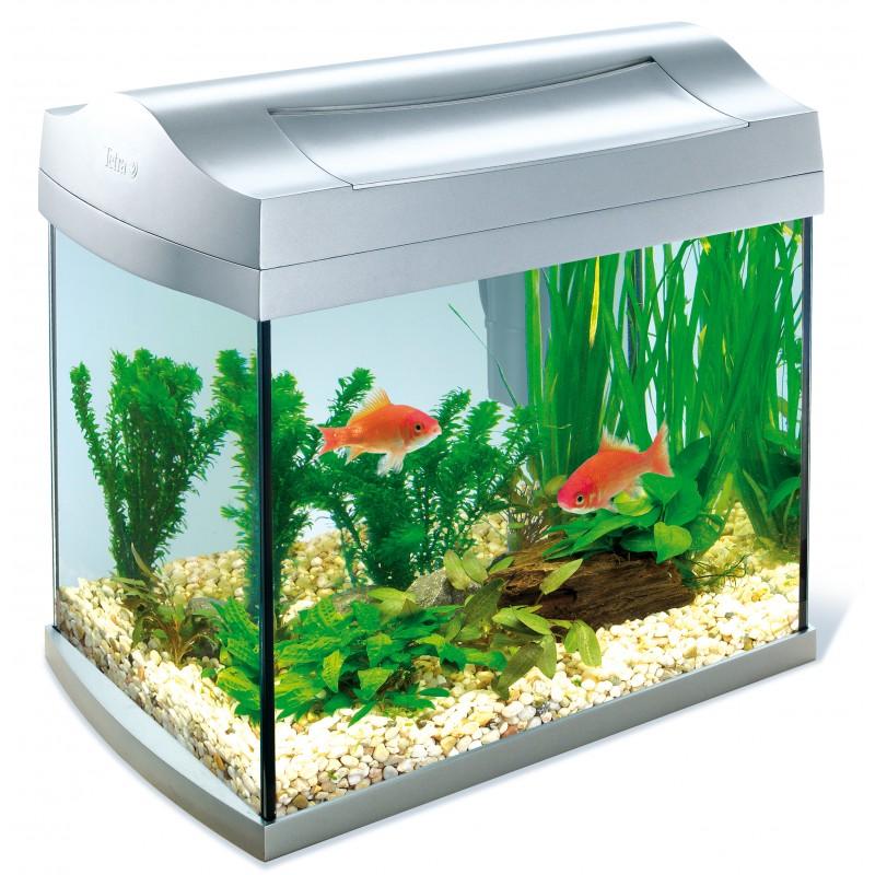 Tetra aqua art aquarium 20 litres for Aquarium a poisson