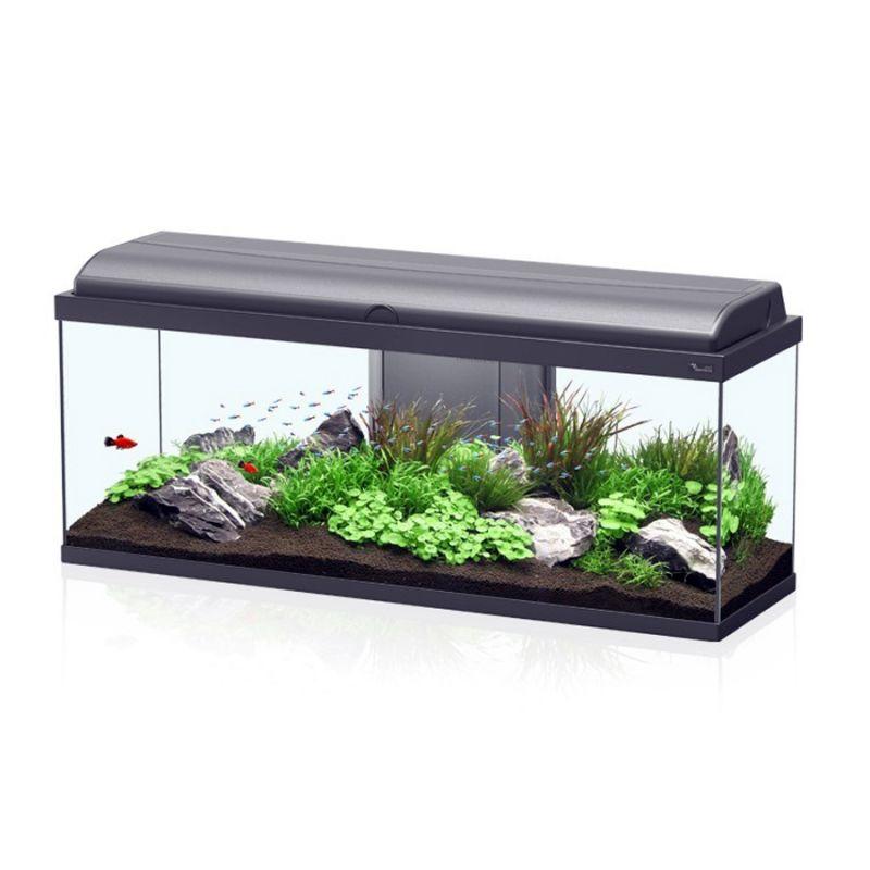 aquarium aquadream 100x30x45 noir sans meuble. Black Bedroom Furniture Sets. Home Design Ideas