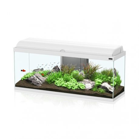 Aquarium aquadream 100x30x45 blanc sans meuble for Meuble aquarium 100 x 30