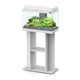 vente en ligne aquariophilie aquariofil poisson d 39 or. Black Bedroom Furniture Sets. Home Design Ideas