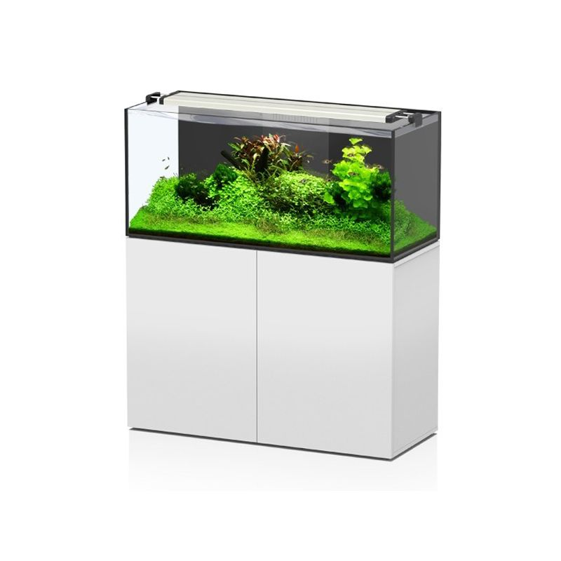 Aquatlantis aquarium aquaview 120 complet eau douce for Aquarium eau douce pas cher