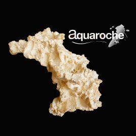 Aquaroches Arche 2028