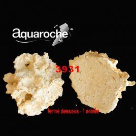 Aquaroches Grottes horizontales - 1 entrée fermé dessous