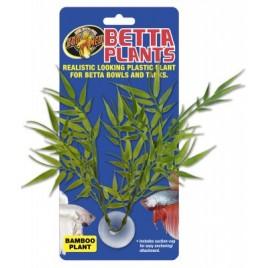 Zoomed betta plant bamboo