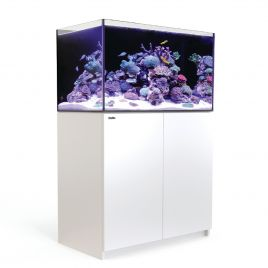 Red Sea REEFER 250 blanc 244 litres