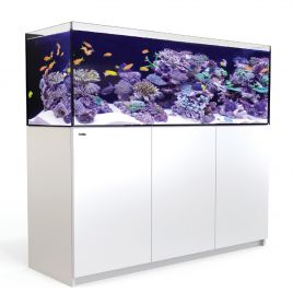 Red Sea REEFER 450 blanc 440 litres