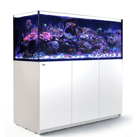 Red Sea REEFER XXL 625 blanc