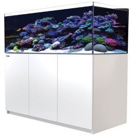 Reefer™ XL 525 Blanc (Aqua + mbl)