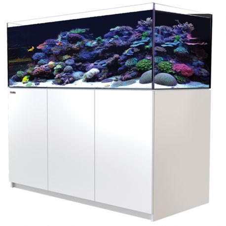 Red Sea REEFER XL 425 Blanc