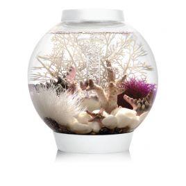 Oase biOrb CLASSIC LED 15 led blanc