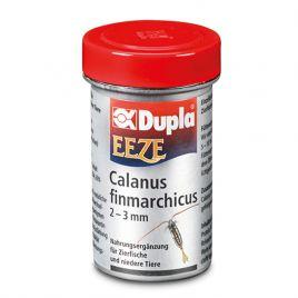 Dupla eeze calanus 2-3mm 180ml 20gr