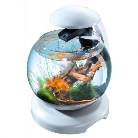 Tetra Cascade Globe 6.8L blanc