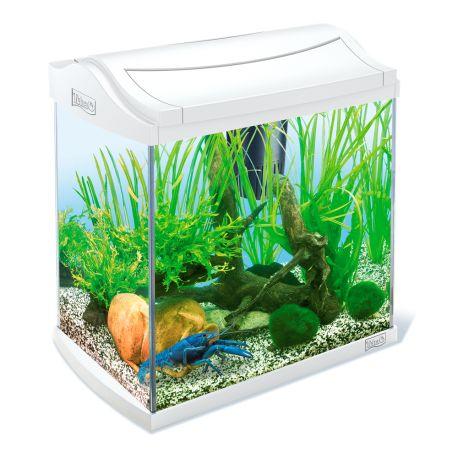 Tetra Aqua art Aquarium 30 litres