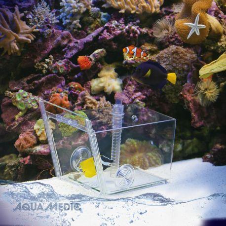 Aqua Medic fish trap Piège pour la capture ciblée de poissons dans l'aquarium
