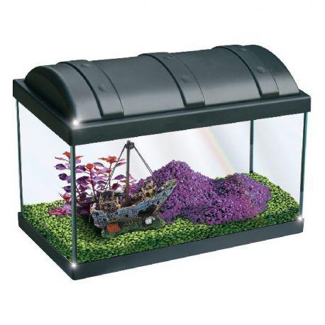 Newa aquarium Hobby 20 litres avec filtre et éclairage LED (42 x 20.5 x 29cm)