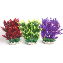 Plante Hedge green, red, mauve/mix 25cm 349708