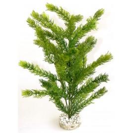 plante Sea Pearl  35cm 349658