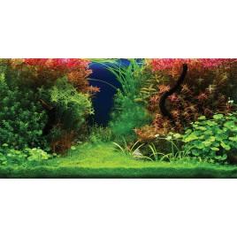 Poster 3D Panorama 100x50cm Aquatic Nature