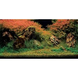Poster 3D Inferno 100x50cm Aquatic Nature