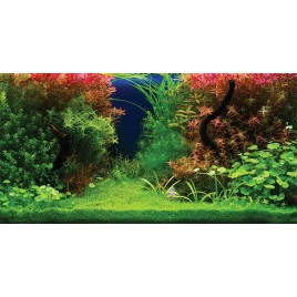 Poster 3D Panorama 120x50cm Aquatic Nature