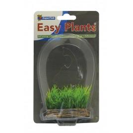 SF easy nano plants avant 6cm nr1