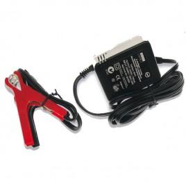 Chargeur de batterie au plomb distributeur professionnel AF1100 & AF3