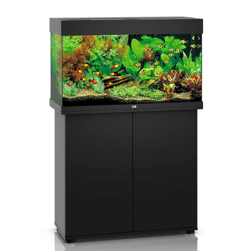 juwel aquarium rio 125 line led noir avec meuble avec portes. Black Bedroom Furniture Sets. Home Design Ideas