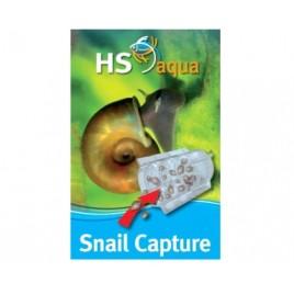 hs snail capture