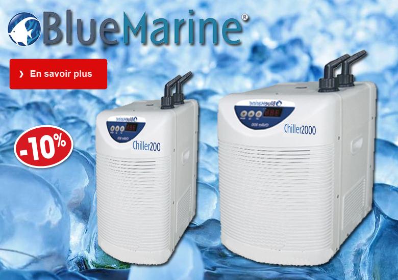 Vente en ligne aquariophilie aquariofil poisson d 39 or for Vente aquariophilie